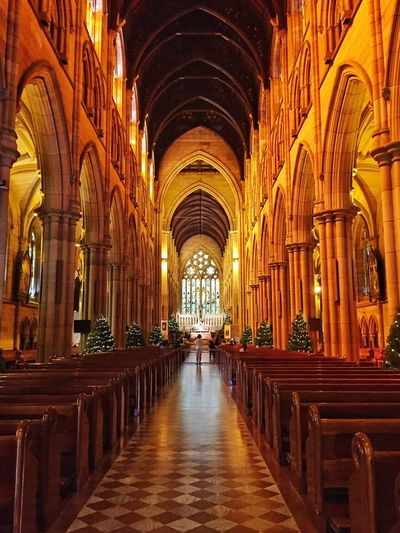 St Mary's Cathedral.... Cathedral Architecture IPS2015Xmas Interior Design Pattern Looking To The Other Side