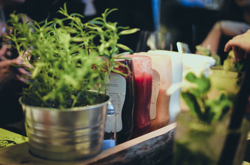 Food And Drink Potted Plant Food Selective Focus Close-up Freshness Plant Growth No People Indoors  Green Color Kitchen Container Nature Day Household Equipment Domestic Room Vegetable Preparation  Leaf Flower Pot