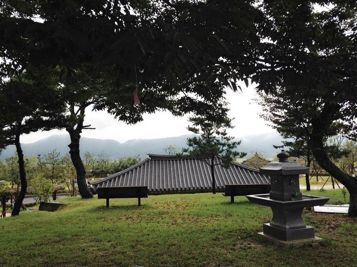 Green Fields Tiled Roof  Korean Traditional Architecture