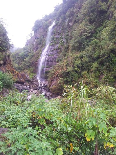 My kind of view. Captured! Bomod-ok Falls Greens Around Relaxing ThankYouLord Beautiful That View Mothanature Bebacksoon