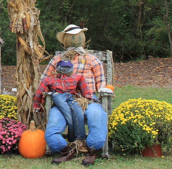 Americana Autumn Country Living Halloween Halloween EyeEm Love Life October Sweet October! Rocking Chair Scarecrows Simple Things In Life Simple Moment Autumn🍁🍁🍁 Beauty In Nature Corn Stalks Country Life Day Enjoying Life Flowers Nature Old Chair Outdoors Pumpkin Scarecrow Scarecrow_contest Tree
