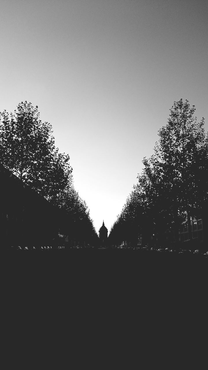 clear sky, tree, copy space, silhouette, no people, outdoors, architecture, nature, day, sky
