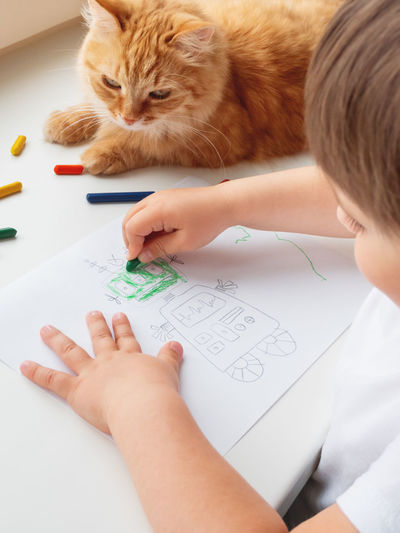 High angle view of boy with cat