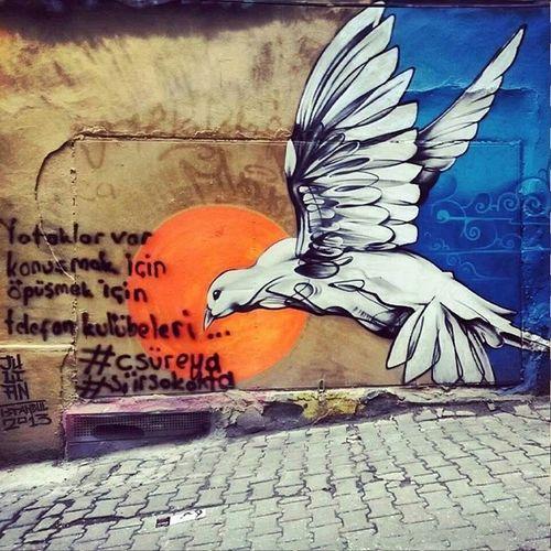 Cemalsureyya Aşk Kuslar Yol graffiti streetlife birds freedom