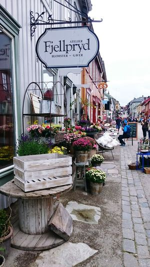 Norway Røros Hello World Taking Photos The Places I've Been Today Street Life