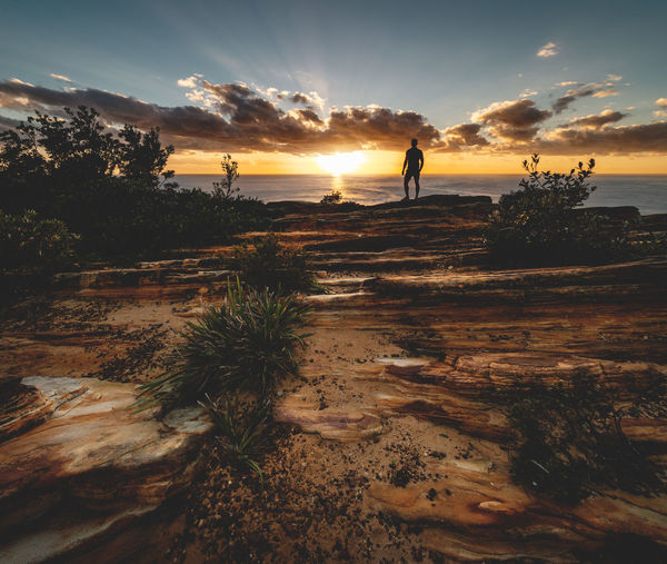 Watching the sunrise from the rocky coast around Coogee, Sydney ☀️☀️☀️ Sky Cloud - Sky Scenics - Nature Sunlight Tranquility Plant Water Men One Person Outdoors Sunrise Coast Coastal Landscape Wide Angle Silhouette View Lookout Sandstone Rock Formation High Resolution Morning Soft Light Sunbeam Bush Sea