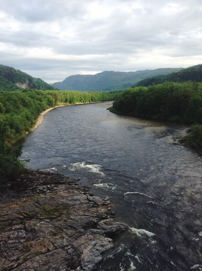 The river Gaula seen from the bridge Gaulfossbrua. River Valley Hovin Nature Landscape Trees Green Norway