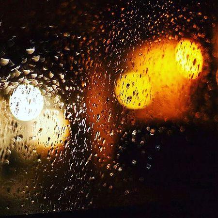 Осень , дождь ,завтра уже холода...
