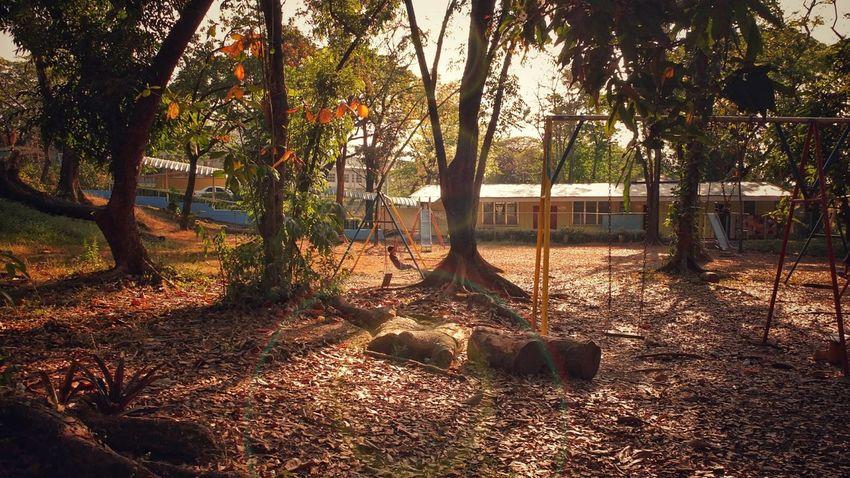 Swing Playgrounds