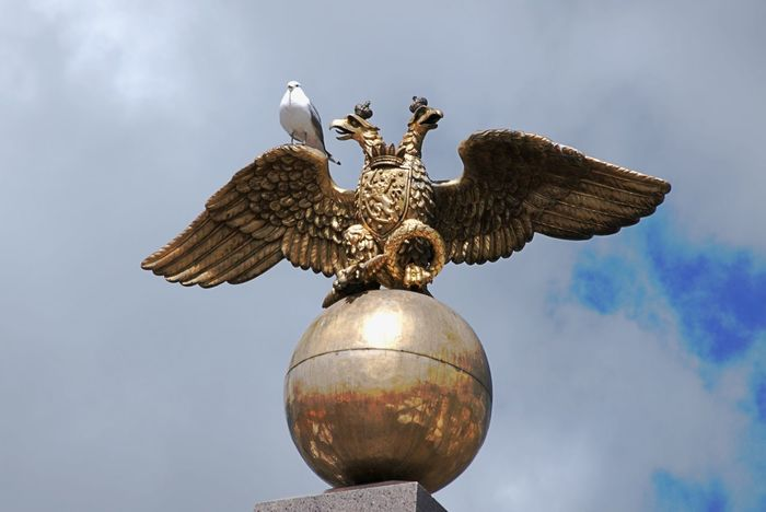 Animal Themes Bird Close-up Day Double Headed Eagle Feathers And Gold Low Angle View Monument No People Outdoors Pretending Sculpture Seagull Sky Spread Wings Statue