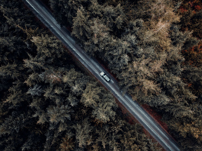 Aerial view of car on road amidst trees