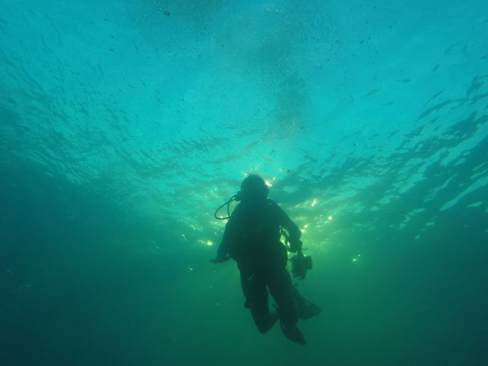 Low angle view of silhouette man scuba diving undersea