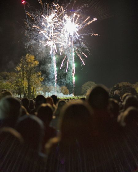 Rear view of people against firework display at park