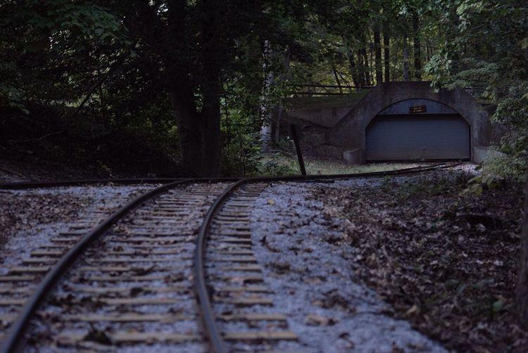 Train Tracks Traintracks Tracks To Nowhere Going Nowhere Going Nowhere Fast Trains Tracks Tranquil Scene Transportation