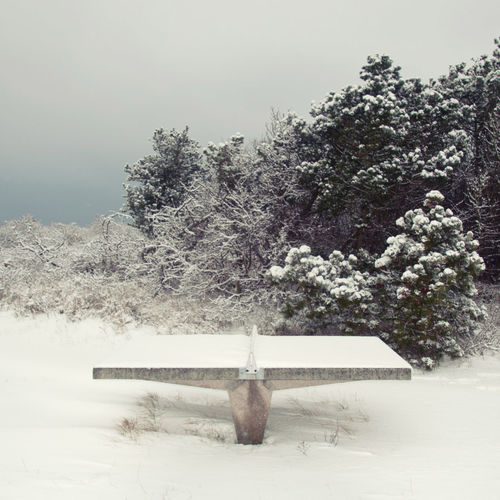 Snow ❄ Beauty In Nature Cold Temperature Day Hiddensee Landscape Nature No People Outdoors Scenics Sky Snow Snow Covered Tabletennis Tranquil Scene Tranquility Tree Weather White Color Winter