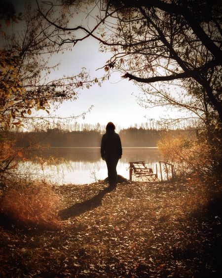 Walking Around Hello, World. Look Automn One Person Tree Plant Nature Full Length Rear View Water Lake Adult Silhouette Beauty In Nature Tranquility Land Solitude Outdoors Standing