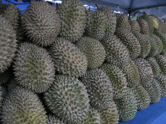 Abundance Asian Fruits Day Durian Fruit Durians Shop Food Food And Drink Freshness Growth Healthy Eating Market Nature No People Outdoors Plant Thorn