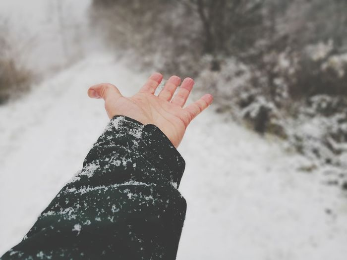 Cropped Hand Of Person Over Snow During Winter