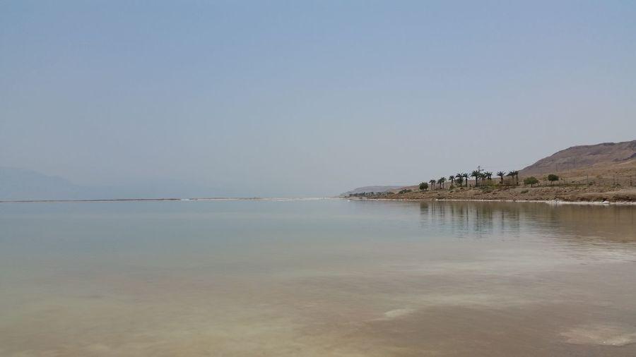 Dead Sea  Beach Sea Tranquil Scene Beauty In Nature Horizon Over Water Travel Destinations Am Bokek Ein Bokek Israel