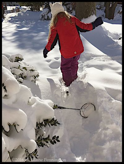 Jessie's snowshoe failed Snowzilla Epic Snow Blizzard 2016 Silver Spring Snowshoes