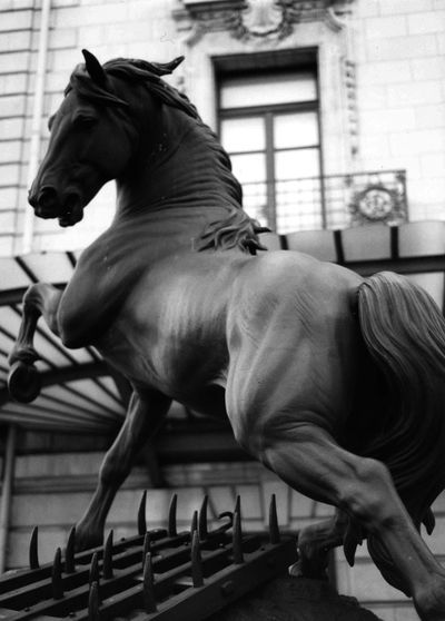 Analog Photography Animal Themes Day Domestic Animals Full Length Horse Louvre Paris Mammal One Person Outdoors People Statue