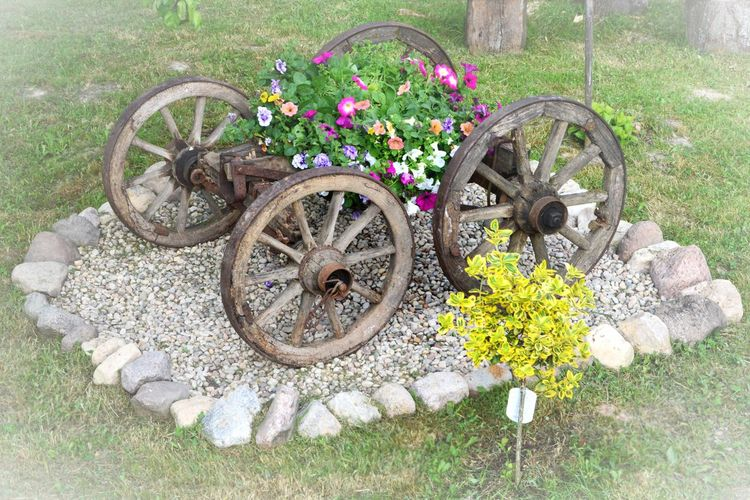 Stones And Flowers Decoration Floral Decoration Flower Garden Flowers Flowers, Nature And Beauty Flowers,Plants & Garden Lithuania Nature Old Old Wheel Old Wooden Wheels Stones Village Old Wheel