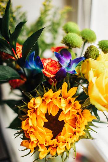 Цветы Flowering
