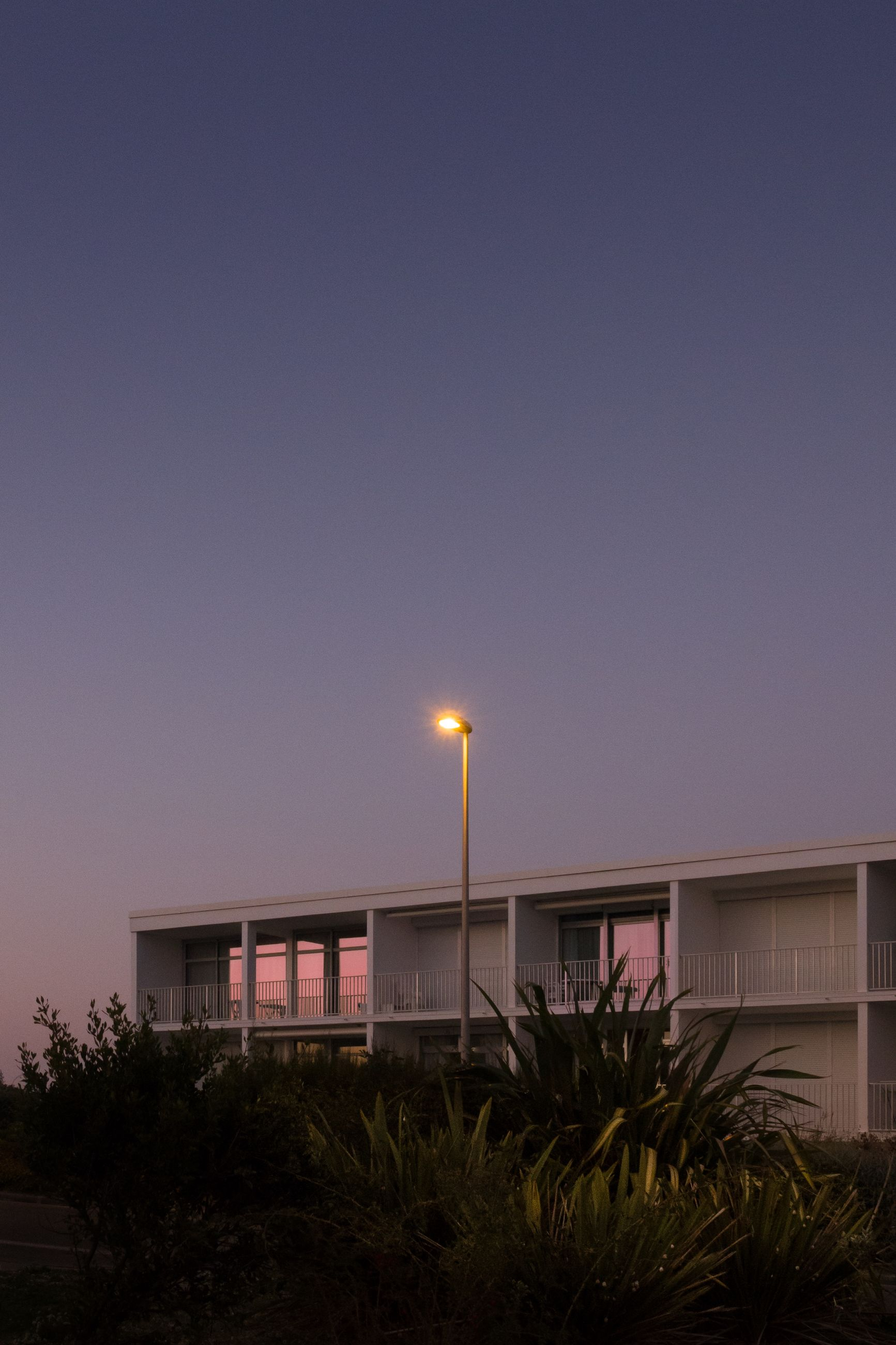 architecture, sky, built structure, building exterior, illuminated, copy space, plant, building, nature, no people, night, lighting equipment, outdoors, street light, clear sky, tree, moon, dusk, house, street