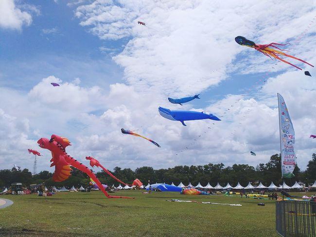 Kite Festival World Kite Festival Pasir Gudang EyeEm Malaysia Sunny Day 🌞