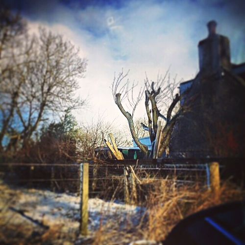 Scotland Trees Skies Aberdeenshire Countryside Messedupjournal Kas© Grass Fence Snow Farmhouse Fencepost
