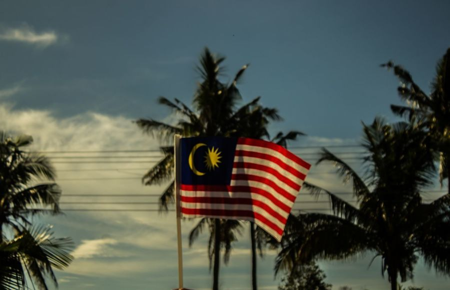 Beauty In Nature Close-up Day Flag Low Angle View Malaysia Nature No People Outdoors Patriotism Sky Stars And Stripes Tree