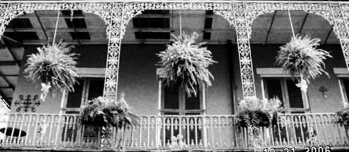 Balcony over burbon Architecture Built Structure Building Exterior No People Outdoors Day New Orleans Burbon Street Martigras