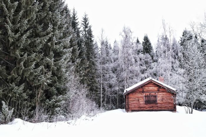 Snow Winter House Built Structure Cold Temperature Hut Building Exterior Tree No People Wood - Material Architecture Day Outdoors Farmhouse Scenics Nature Sky Beauty In Nature Forest Nature Winter Popular Photos