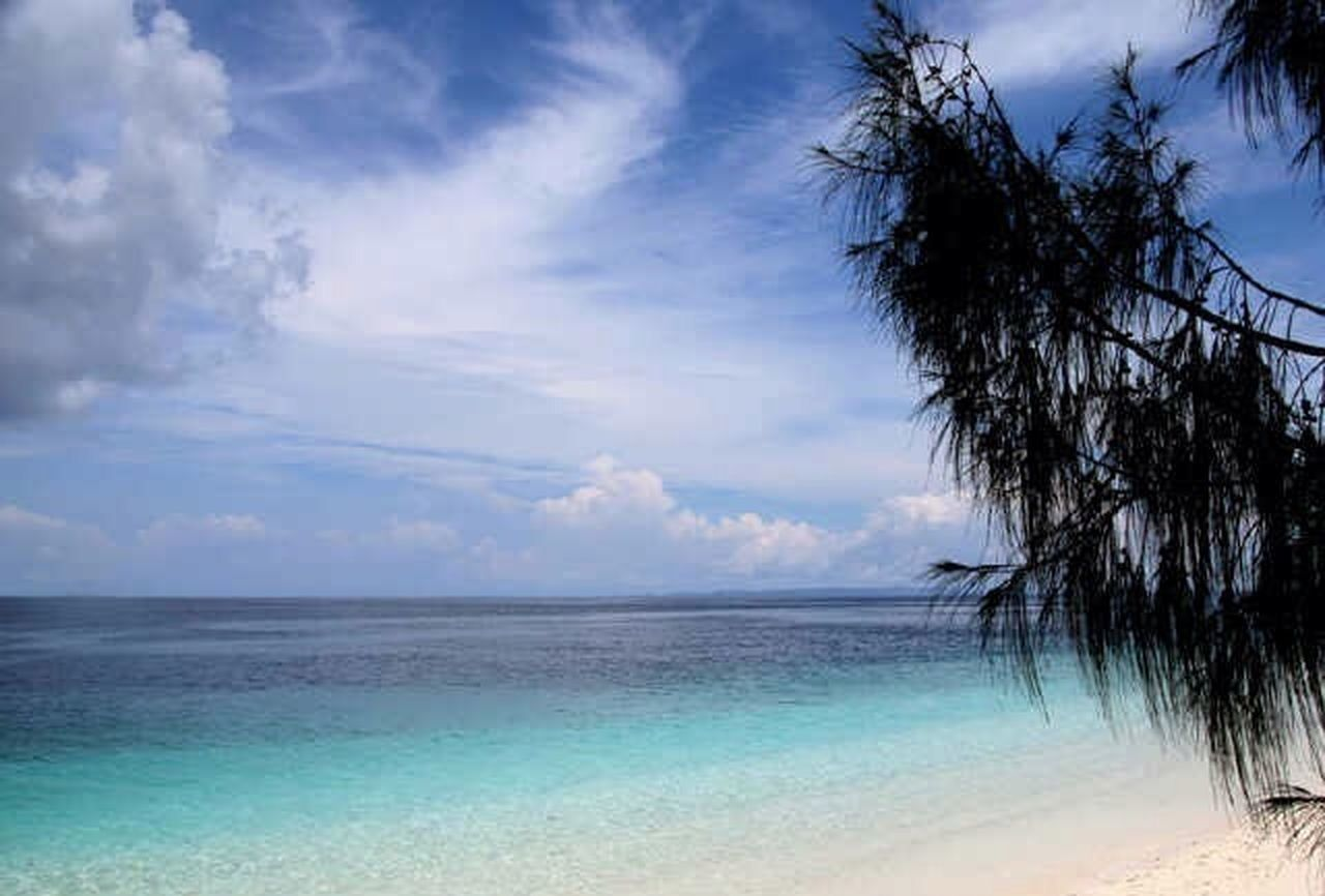 sea, water, horizon over water, sky, cloud - sky, scenics, beach, tranquil scene, outdoors, tranquility, tree, nature, beauty in nature, day, no people