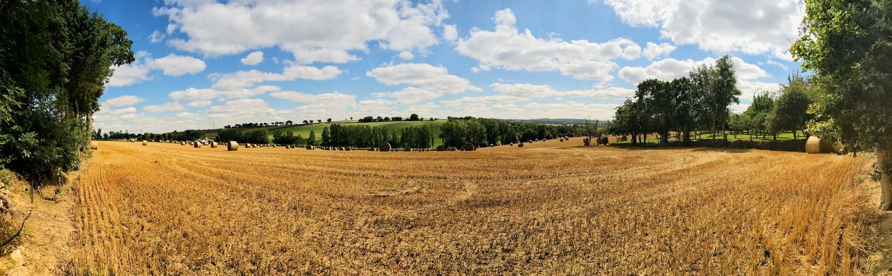 Brittany France Panorama Panoramic Agriculture Beauty In Nature Cloud - Sky Day Field Growth Hay Bale Landscape Maël-carhaix Nature No People Outdoors Panoramic Rural Scene Scenics Sky Tranquil Scene Tranquility Tree
