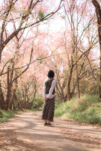Rear view of woman standing against cherry tree