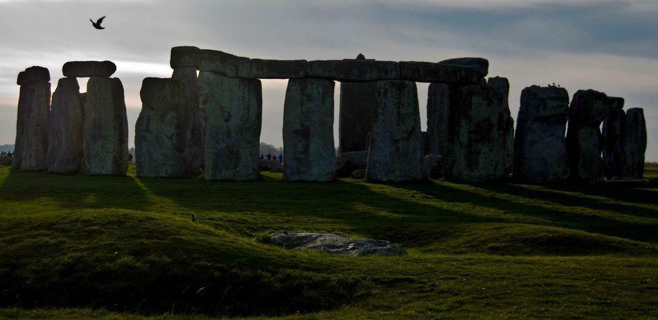 Memorial History Travel Destinations EyeEmNewHere Bird Stonehenge Sky