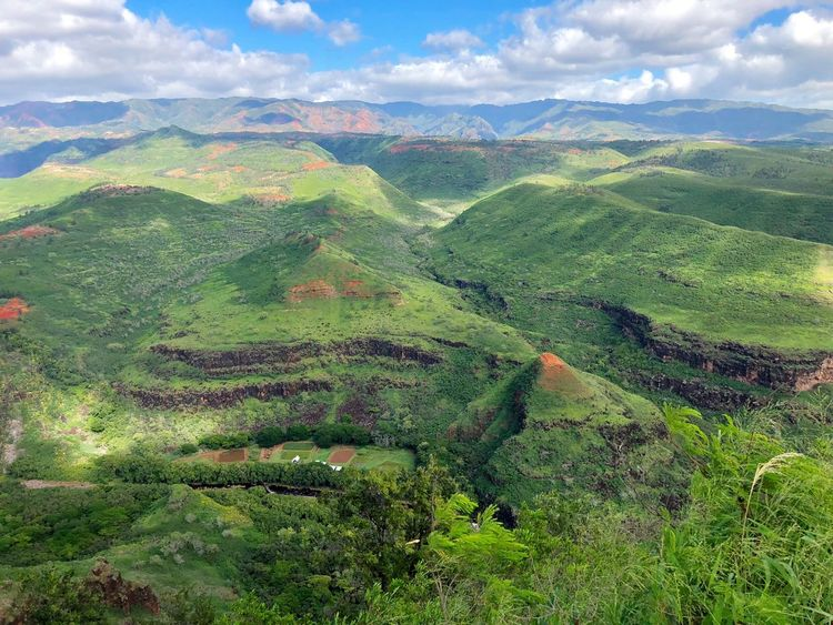 Hawaii Kauai Waimea Canyon Valley Rural Landscape Mountain Landscape Beauty In Nature Green Color Nature Tranquil Scene Scenics Tranquility No People Growth Cloud - Sky Sky Agriculture Outdoors Day Mountain Range Tea Crop