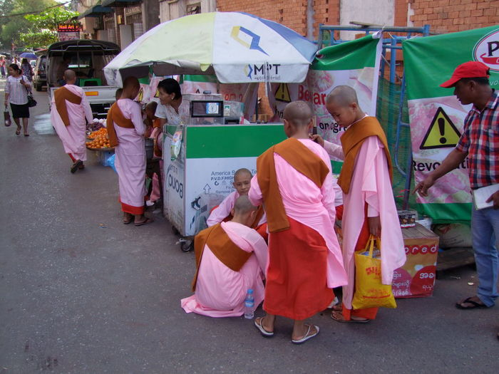 Nuns in Indian Quarter Buddhism Buddhism Culture Buddhist Nuns City City Life Composition Full Frame Full Length Large Group Of People Myanmar Nuns Outdoor Photography People Pink Clothes Real People Religious People Road Standing Street Togetherness Traditional Clothing Travel Destination Umbrella Yangon Young Women
