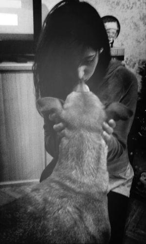Me Dog Laika Friend