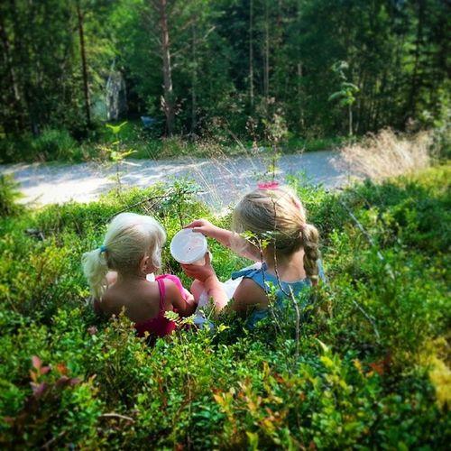 Utpåtur Blåbærtur Blåbærlyng Bærtur i Skogen Nature's Diversities Friendship Friends Nature Woods Forest Berries The Essence Of Summer Two Is Better Than One