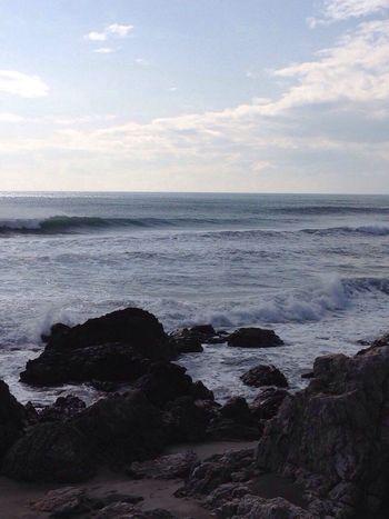 サーフィン 波乗り ロングビーチ