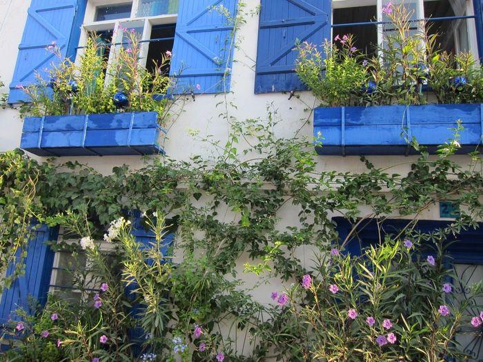 Sığacık / Izmir 25 Days Of Summer