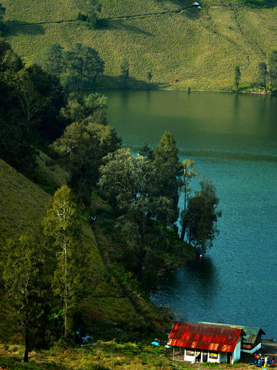 High angle view of trees by lake in forest