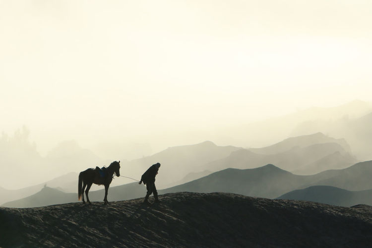 Silhouette man walking with horse on mountain against sky