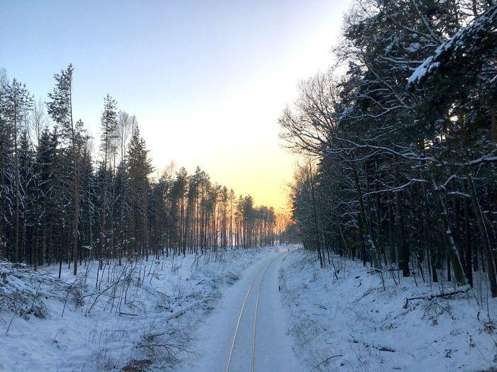 Winter in Wallroda Cold Temperature Winter Snow Railway From Bridge Sunset Frozen Tree Railway In Winter EyeEmNewHere Be. Ready. EyeEmNewHere