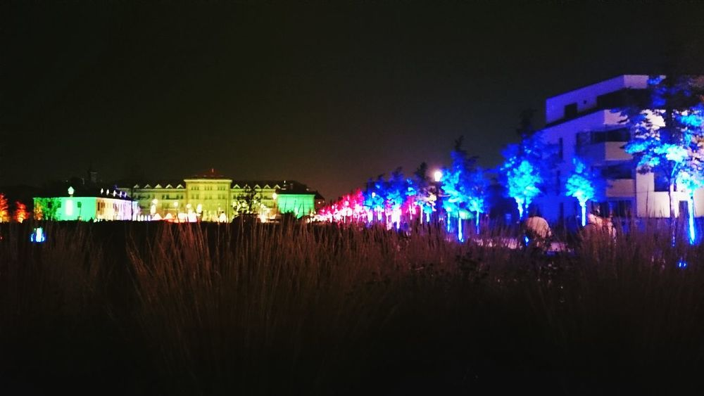 Landau In Der Pfalz Landesgartenschau Night Of Lights  Landau City Afternoontreets Friends Lostinvision