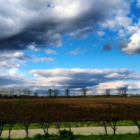 Clouds And Sky Field Rain Clouds