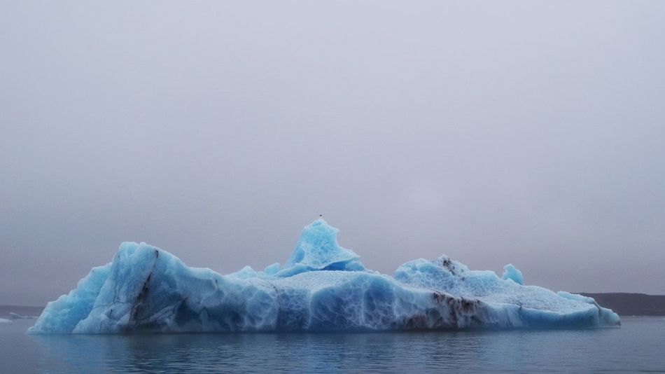Jökulsarlon Glacier Lagoon in southern iceland, with magnificent floating icebergs Cold Tone I Ice Icebergs Icebergs, Bondi Beach Iceland Jökulsárlón Science Arctic Blue Climate Climate Change Climate Science Climatology Cold Cold Temperature Glacier Iceberg Temperature