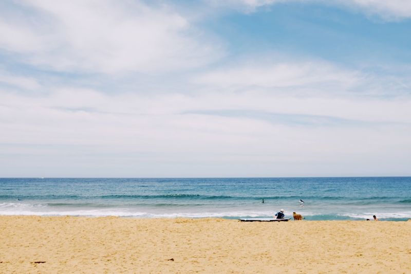 Sea Beach Horizon Over Water Sky Sand Cloud - Sky Water Nature Scenics Beauty In Nature Wave Tranquility Day Outdoors Vacations No People Animal Themes Bird